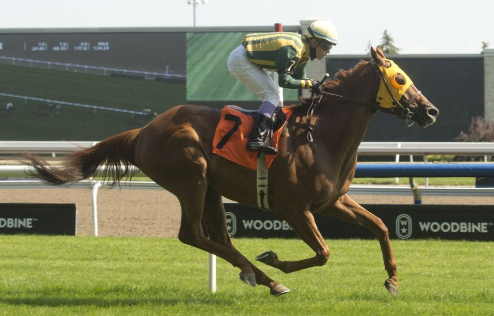 2021 Ricoh Woodbine Mile Quick Picks Town Cruise