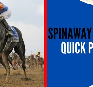 Spinaway Stakes Quick Picks