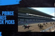 Hill Prince Stakes Quick Picks